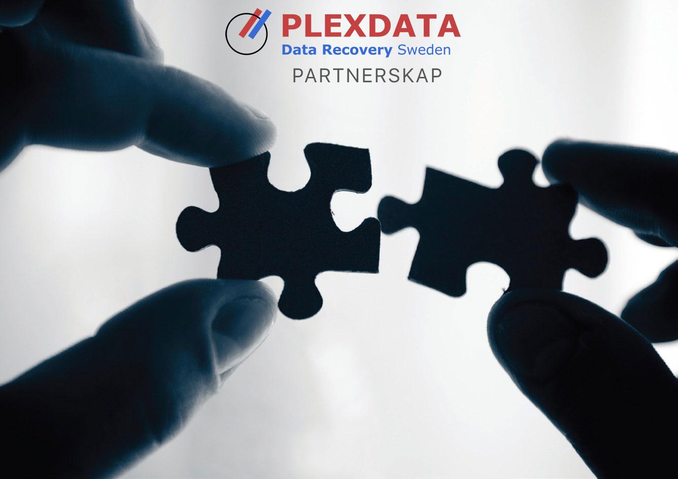 Plexdata Partner